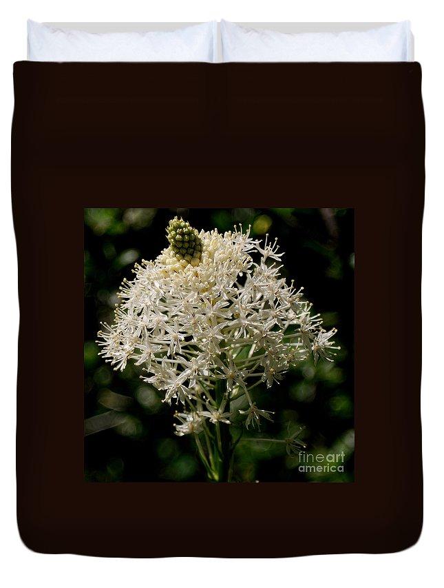 Bear Grass Duvet Cover featuring the photograph Beargrass Bloom by Sharon Elliott