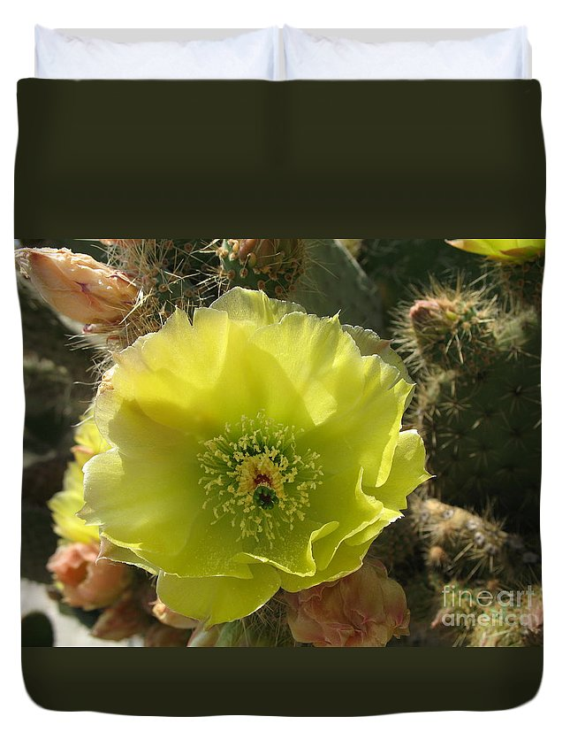 Cactus Duvet Cover featuring the photograph Beautiful And Barbed by Christiane Schulze Art And Photography