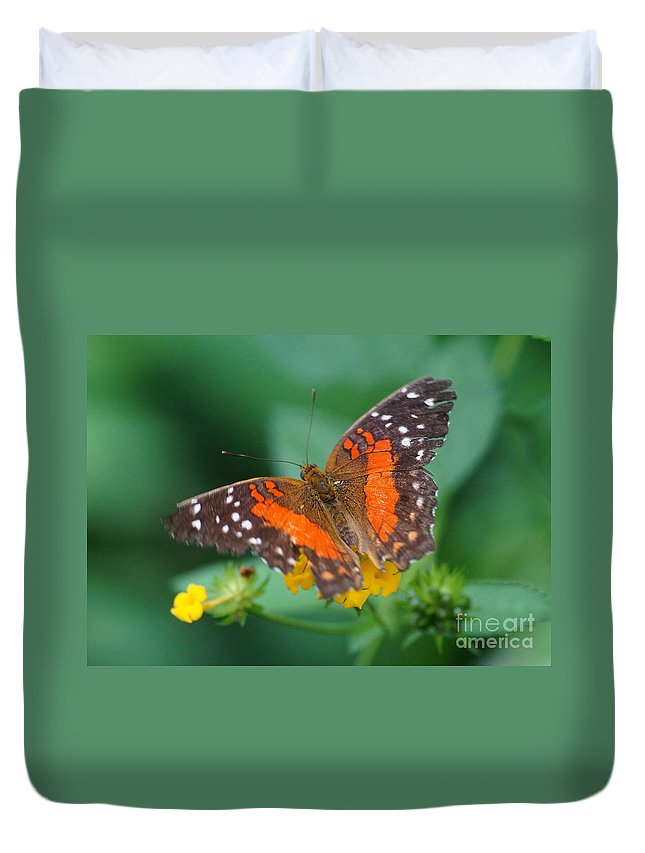 Nature Duvet Cover featuring the photograph Red Anartia Butterfly 1 by Rudi Prott