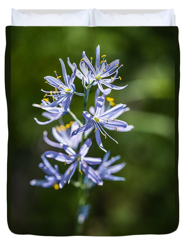 Camas Lily Duvet Cover featuring the photograph Beautiful Camas Lily In Idaho by Vishwanath Bhat