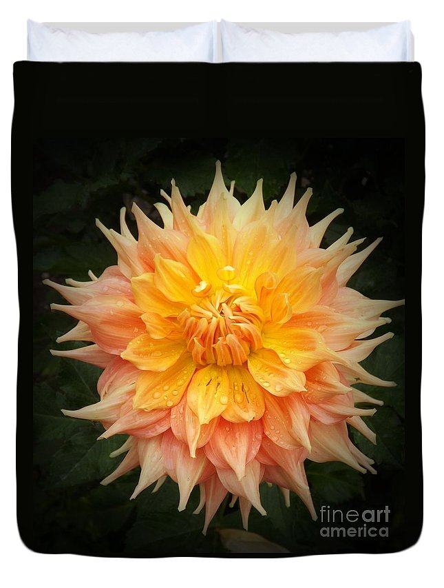 Orange Duvet Cover featuring the photograph Beautiful Dahlia by Sara Raber