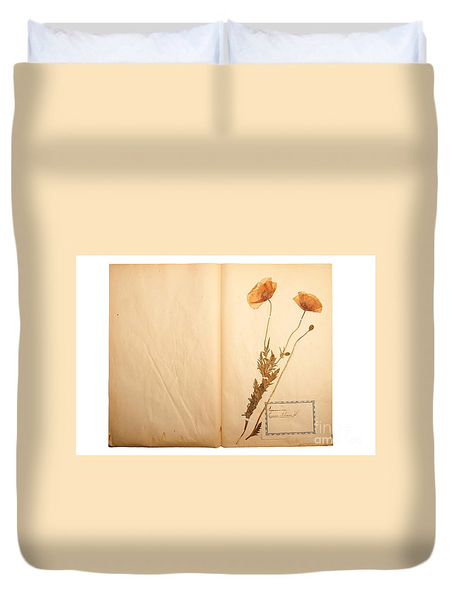 Flower Duvet Cover featuring the photograph Beautiful Dried Vintage Flowers by Jochen Schoenfeld