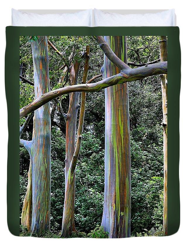 Rainbow Duvet Cover featuring the photograph Beautiful Eucalyptus by DJ Florek