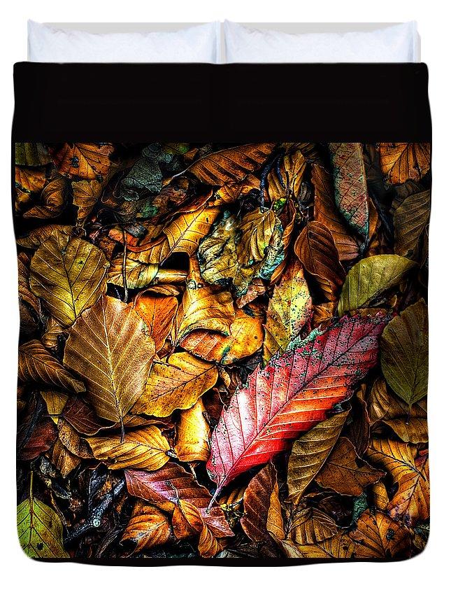 Leaf Litter Duvet Covers