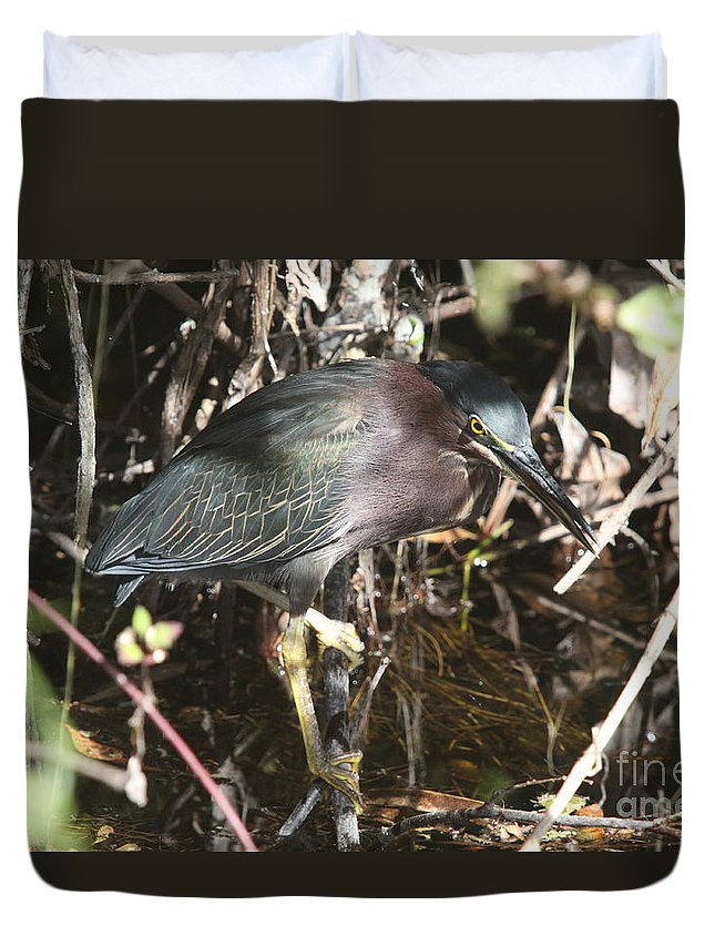 Little Green Heron Duvet Cover featuring the photograph Beautiful Heron by Christiane Schulze Art And Photography