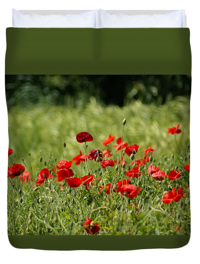 Poppies Duvet Cover featuring the photograph Beautiful Poppies 3 by Carol Lynch