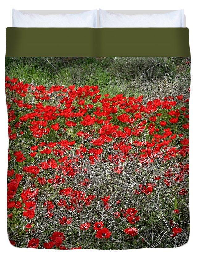 Anemone Coronaria Duvet Cover featuring the photograph Beautiful Red Wild Anemone Flowers In A Spring Field by Taiche Acrylic Art