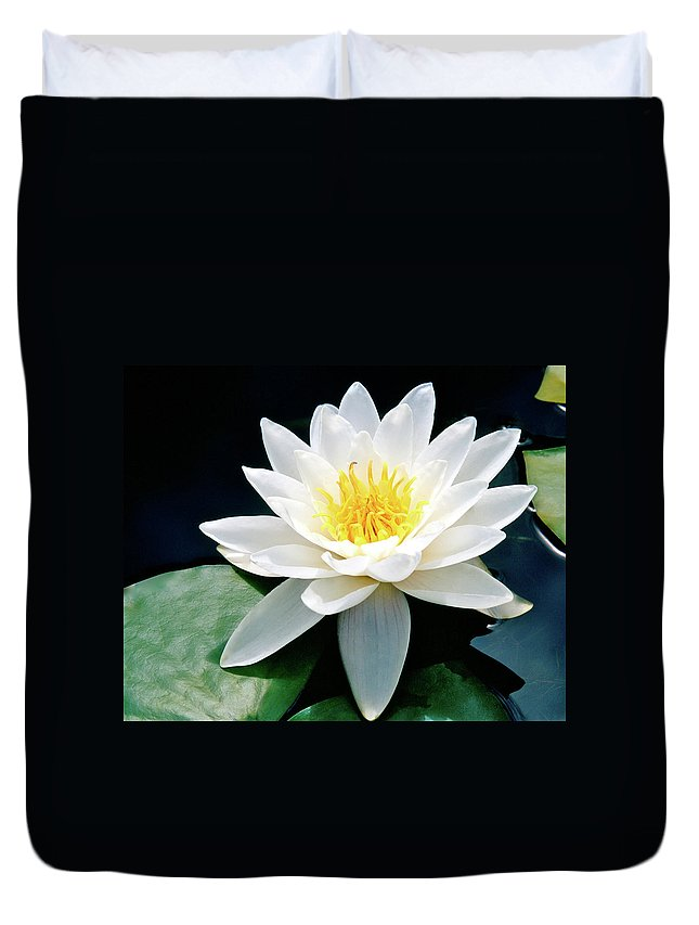Water Lily Duvet Cover featuring the photograph Beautiful Water Lily Capture by Ed Riche