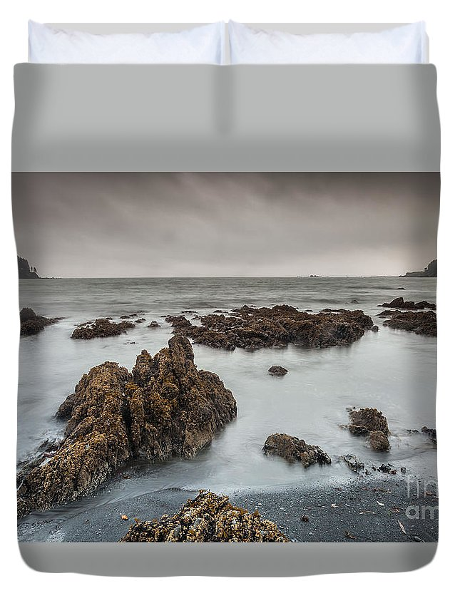 Nature Duvet Cover featuring the photograph Beauty On A Cloudy Morning by Steven Reed