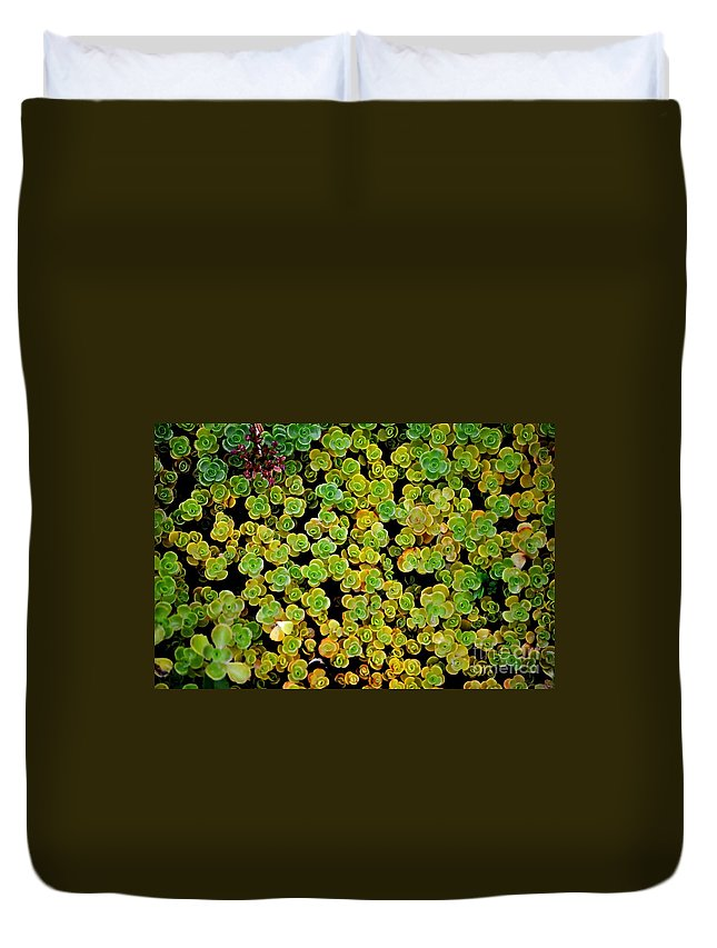 Oregon Duvet Cover featuring the photograph Bed Of Sedum by Mandy Judson