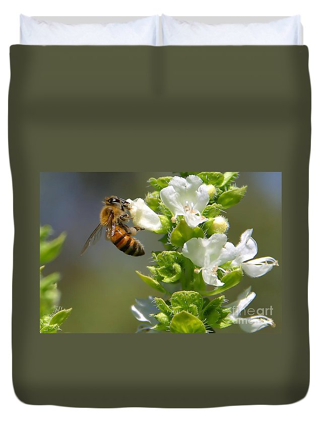 Bee Duvet Cover featuring the photograph Bee On Basil by Nikki Vig