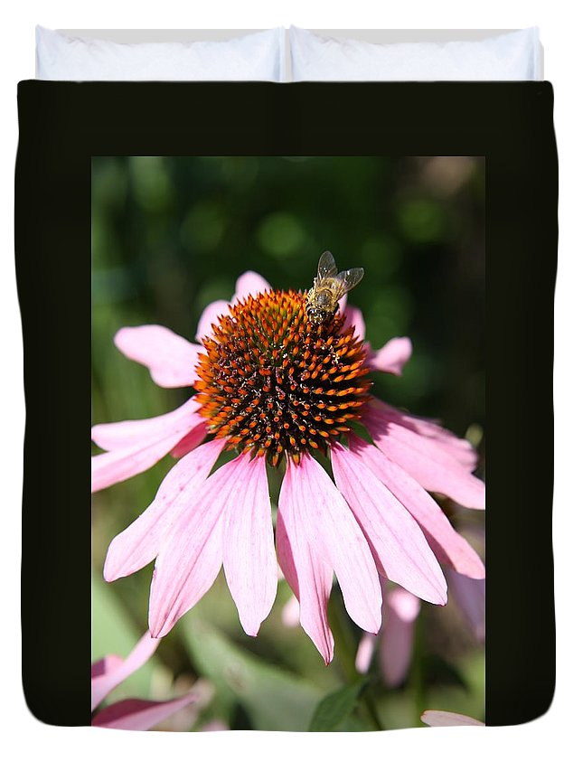 Coneflower Duvet Cover featuring the photograph Bee On Coneflower by Christiane Schulze Art And Photography