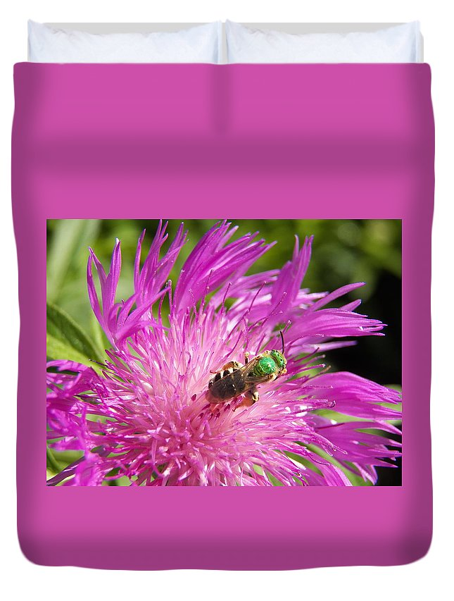 Bee Duvet Cover featuring the photograph Bee On Corn Flower by Corinne Elizabeth Cowherd