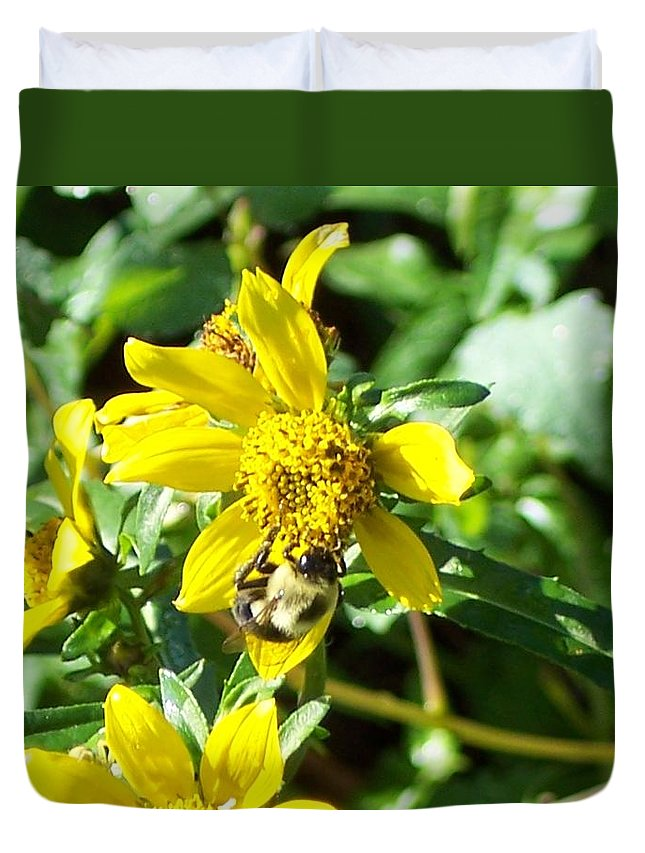Bee Duvet Cover featuring the photograph Bee On Flower by Michelle Miron-Rebbe