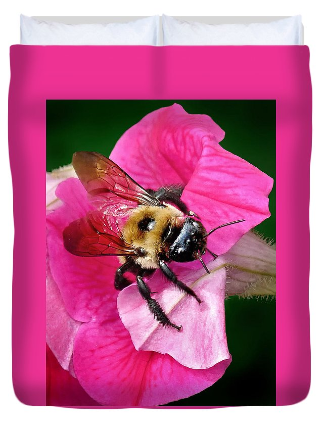 Bee On Petunia Duvet Cover featuring the photograph Bee On Petunia by Carolyn Derstine