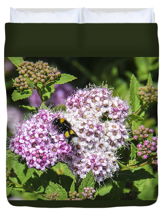 Bee Duvet Cover featuring the photograph Beezzzz by Sotiris Filippou