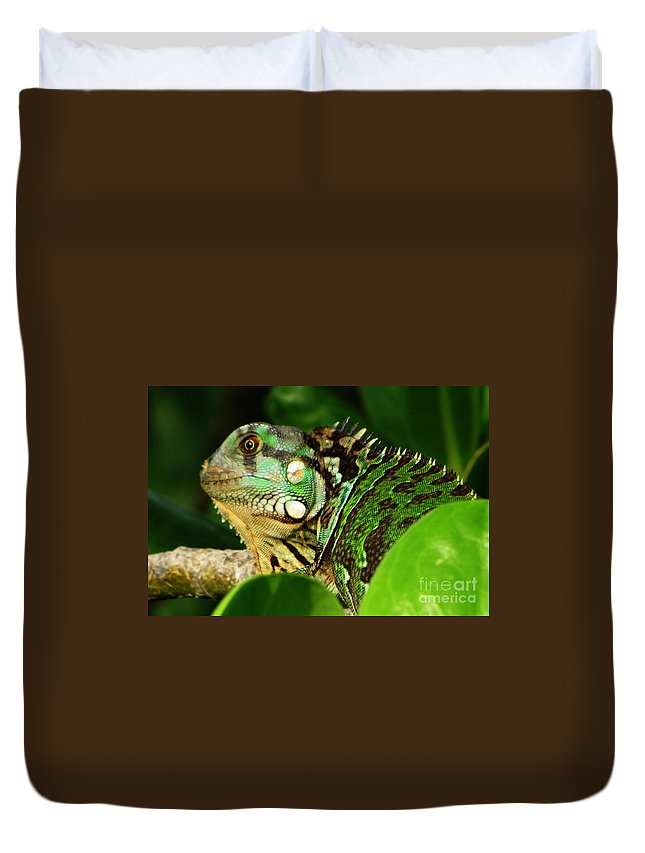 Nature Duvet Cover featuring the photograph Believe It by Ron Tackett
