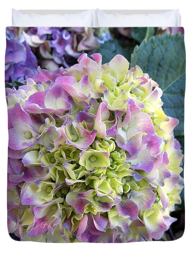 Hydrangea Duvet Cover featuring the photograph Beter Bloom Late Then Never by To-Tam Gerwe