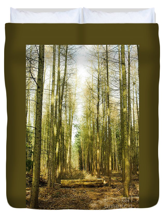 Forest Duvet Cover featuring the photograph Betweenthe Trees by Babs Gorniak