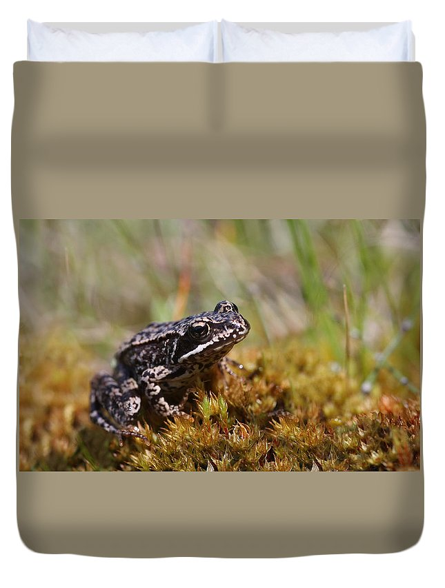 Cute Duvet Cover featuring the photograph Beutiful Frog On The Moss by Dreamland Media