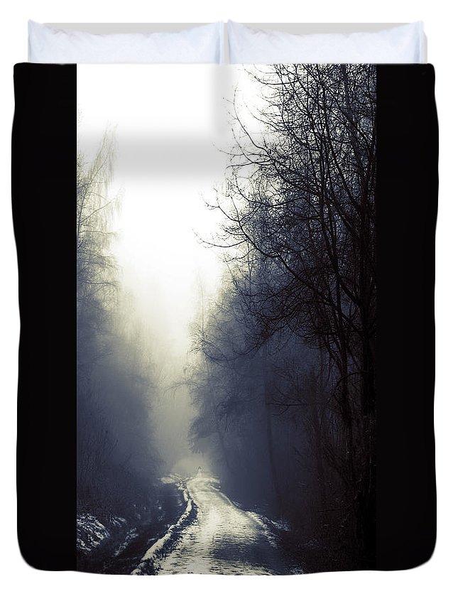 Lisa Knechtel Duvet Cover featuring the photograph Beyond by Lisa Knechtel