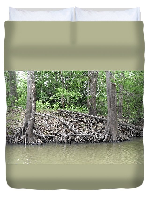 River Pictures Duvet Cover featuring the photograph Big Cypress River Trees by Donna Wilson