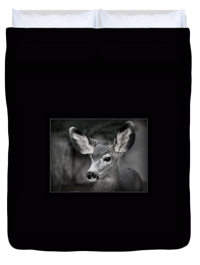 Big Ears Duvet Cover featuring the photograph Big Ears by Ernie Echols