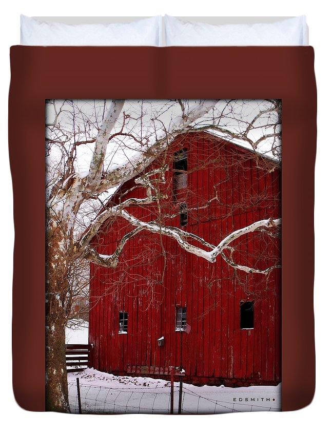 Big Red Bird House Duvet Cover featuring the photograph Big Red Bird House by Ed Smith