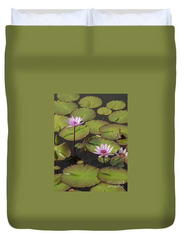 Water Duvet Cover featuring the photograph Biltmore Water Lillies by Brook Steed