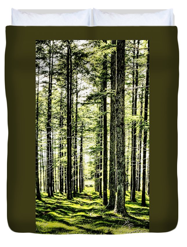 Birch Duvet Cover featuring the photograph Birch Forest Fractal by Weston Westmoreland