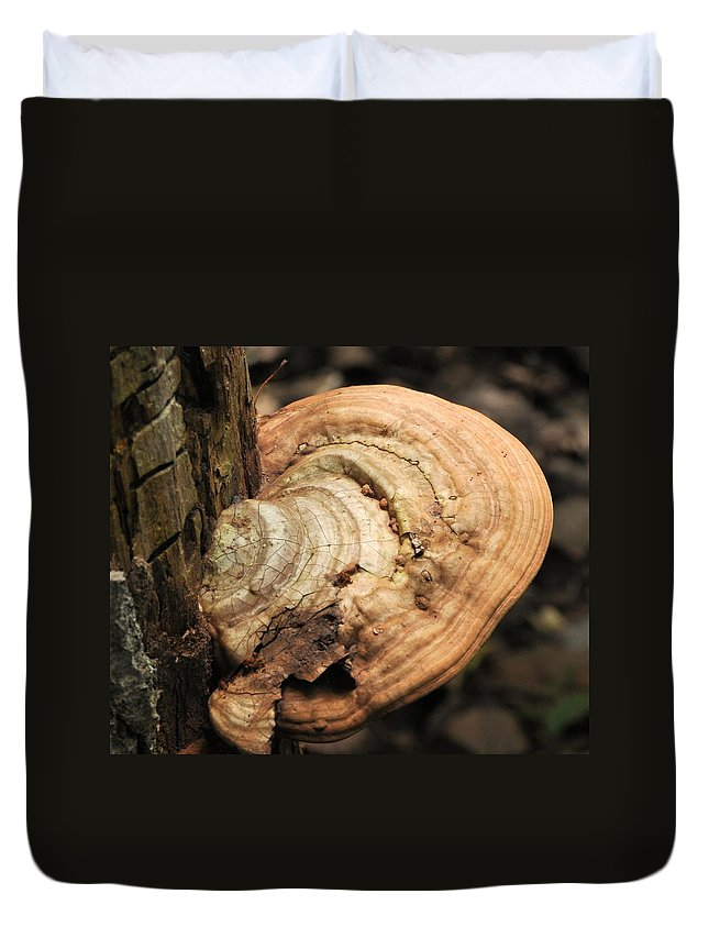 Artist's Conk Duvet Cover featuring the photograph Artist's Conk by Valerie Kirkwood