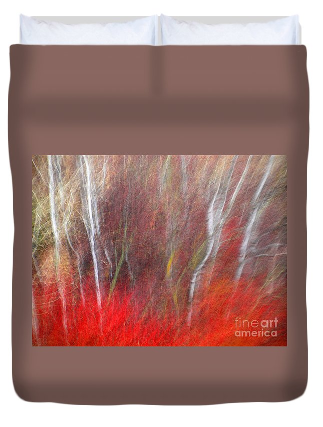 Blur Duvet Cover featuring the photograph Birch Trees Abstract by Tara Turner