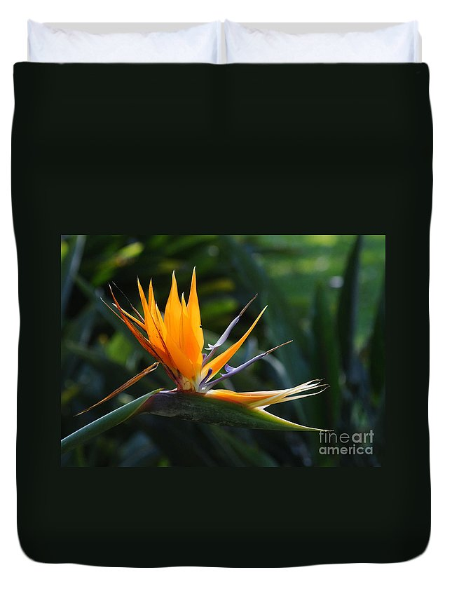 Prott Duvet Cover featuring the photograph Bird Of Paradise by Rudi Prott