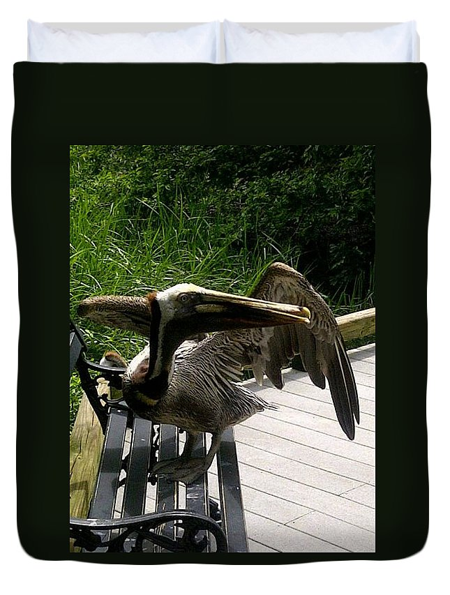 Prehistoric Bird Duvet Cover featuring the photograph Bird On A Bench by Mary Koval