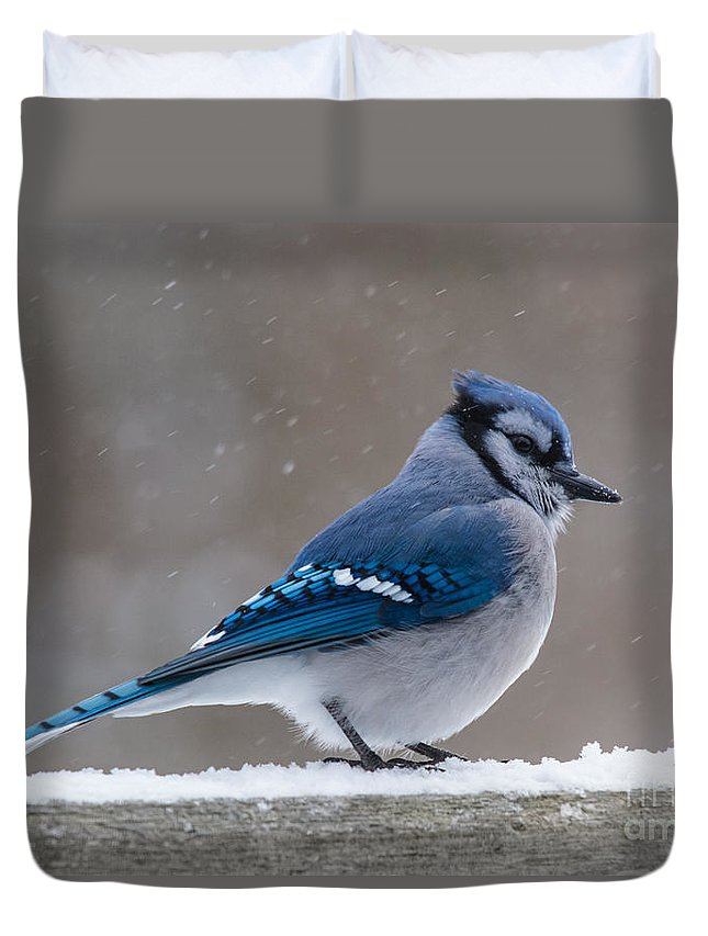 Duvet Cover featuring the photograph Bird On A Fence by Cheryl Baxter