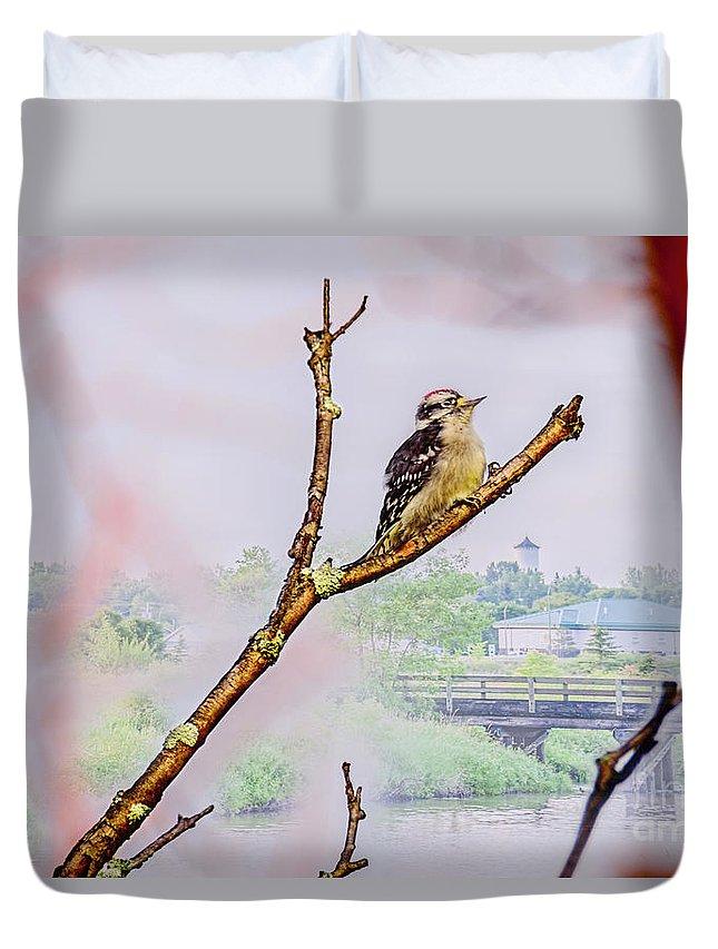 Bird Duvet Cover featuring the photograph Bird On The Brunch by Viktor Birkus