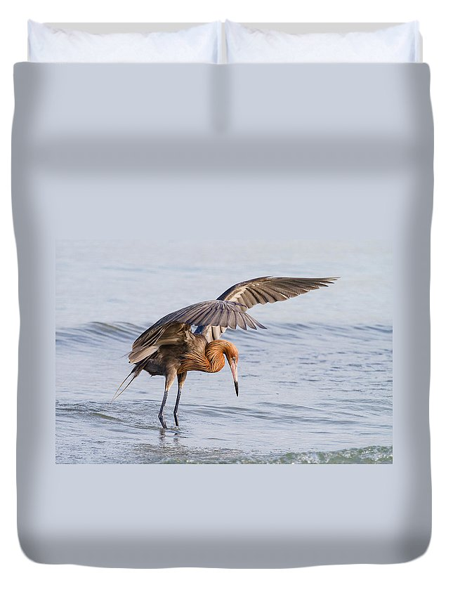 Reddish Egret Duvet Cover featuring the photograph Bird Photograph Reddish Egret Fishing In Ocean by Bill Swindaman