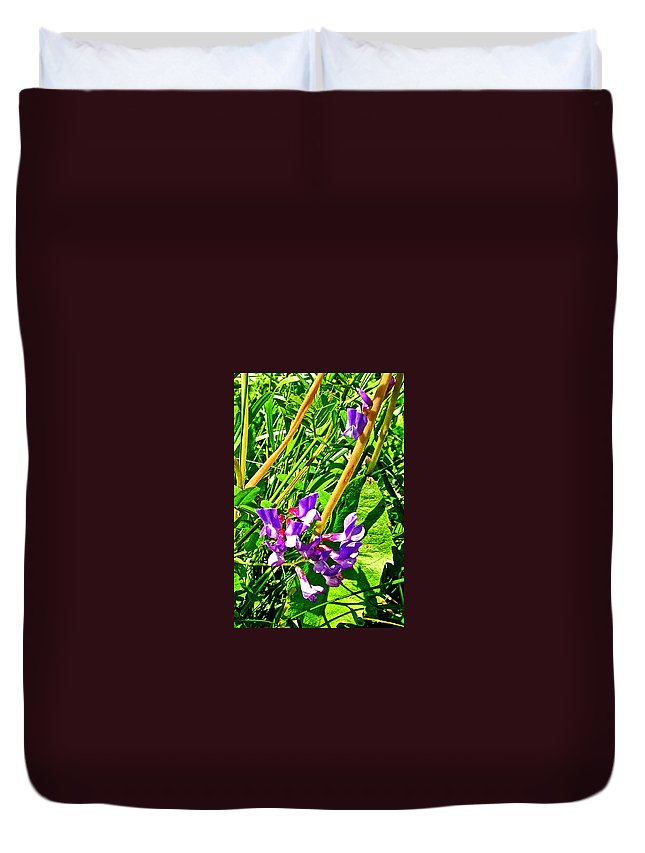 Bird Vetch On Bow River Trail Banff National Park Duvet Cover featuring the photograph Bird Vetch On Bow River Trail In Banff National Park-alberta by Ruth Hager