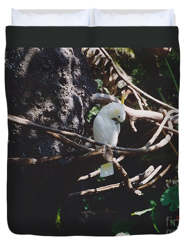 Nature Duvet Cover featuring the photograph Birdie Sitting In The Tree by Michelle Powell