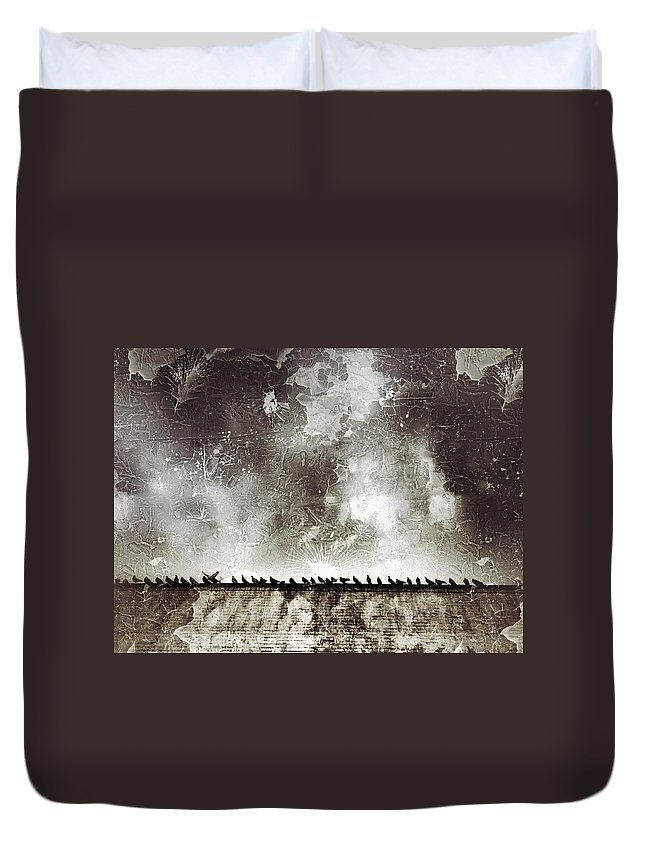 Birds Duvet Cover featuring the photograph Birds by H James Hoff