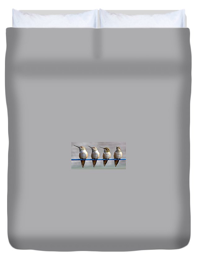 Rufous Hummingbird Duvet Cover featuring the photograph Birds On A Wire by Randy Hall