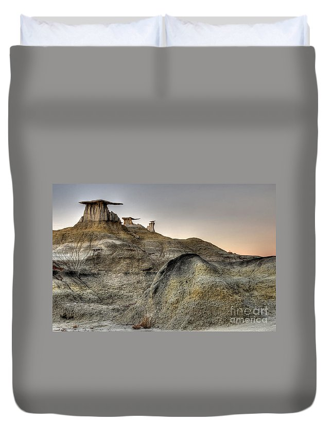 Textures Duvet Cover featuring the photograph Bisti De-na-zin Wings by Vivian Christopher