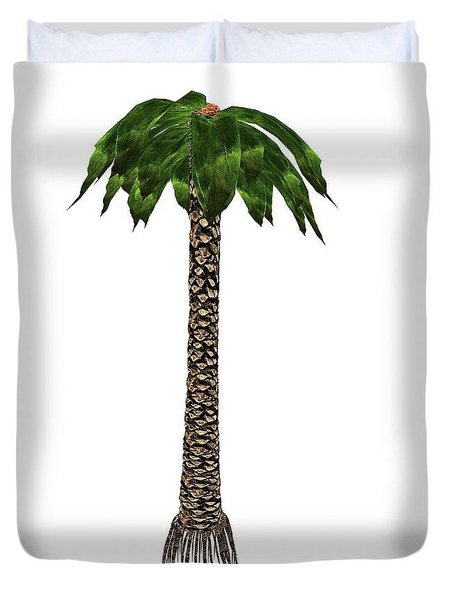 Tree Duvet Cover featuring the photograph Bjuvia Simplex Prehistoric Tree by Elena Duvernay