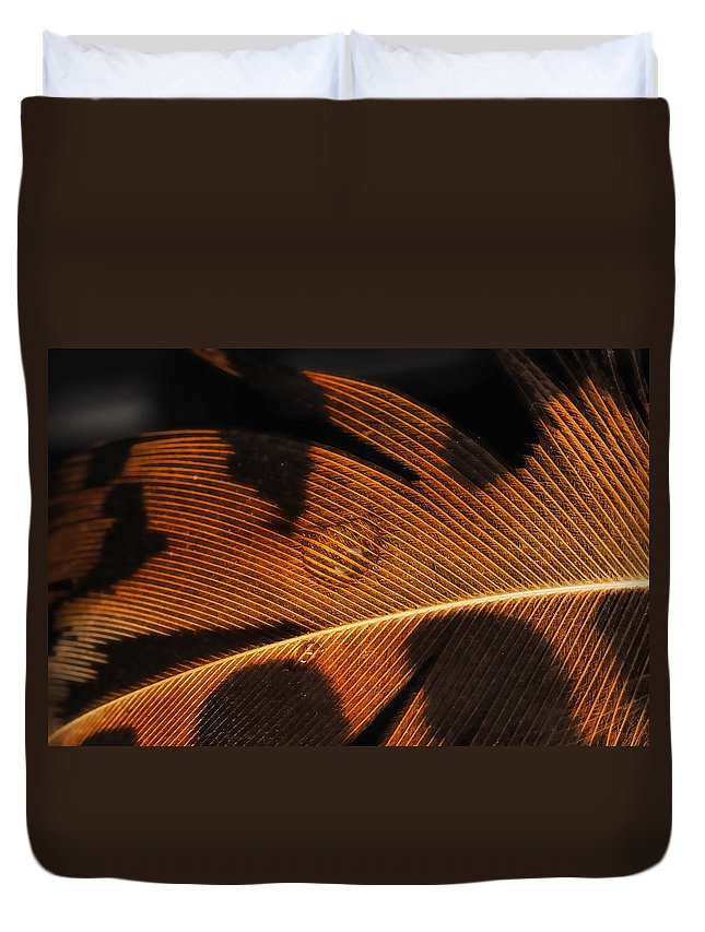 Feather Duvet Cover featuring the photograph Black And Gold by Susan Capuano