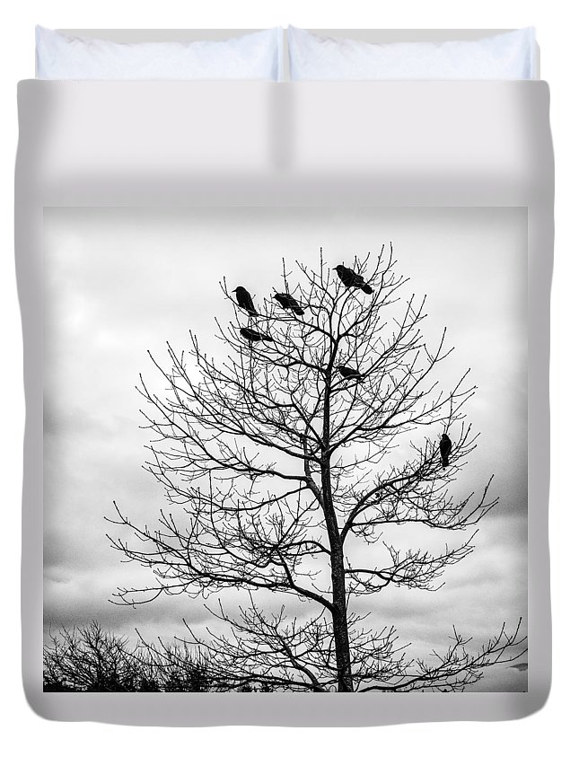 Cloudy Day Duvet Cover featuring the photograph Black And White Blackbirds by Roxy Hurtubise