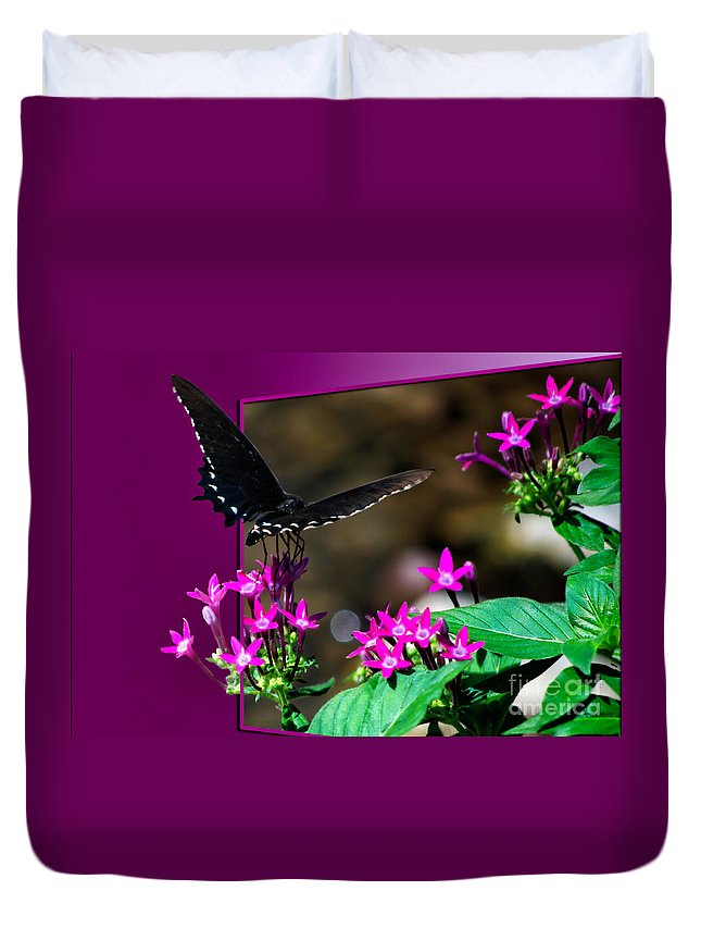 Butterfly Duvet Cover featuring the photograph Black Butterfly 06 by Thomas Woolworth