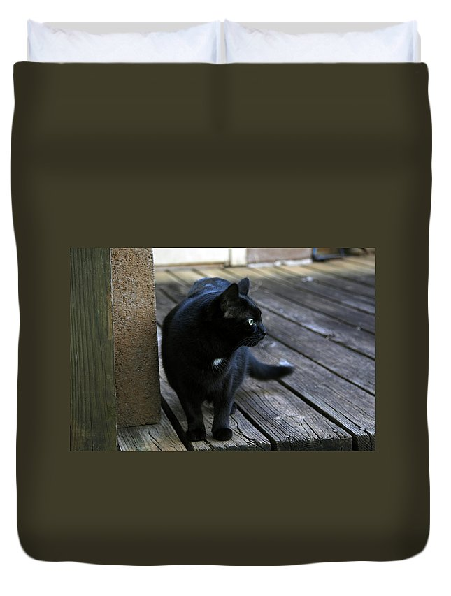 Black Duvet Cover featuring the photograph Black Cat On Porch by Melinda Fawver