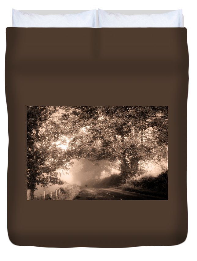 Scotland Duvet Cover featuring the photograph Black Dog On A Misty Road. Misty Roads Of Scotland by Jenny Rainbow