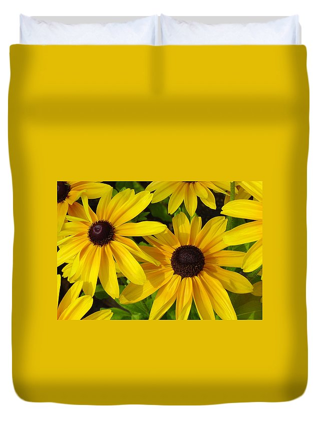 Black Eyed Susan Duvet Cover featuring the photograph Black Eyed Susans by Suzanne Gaff