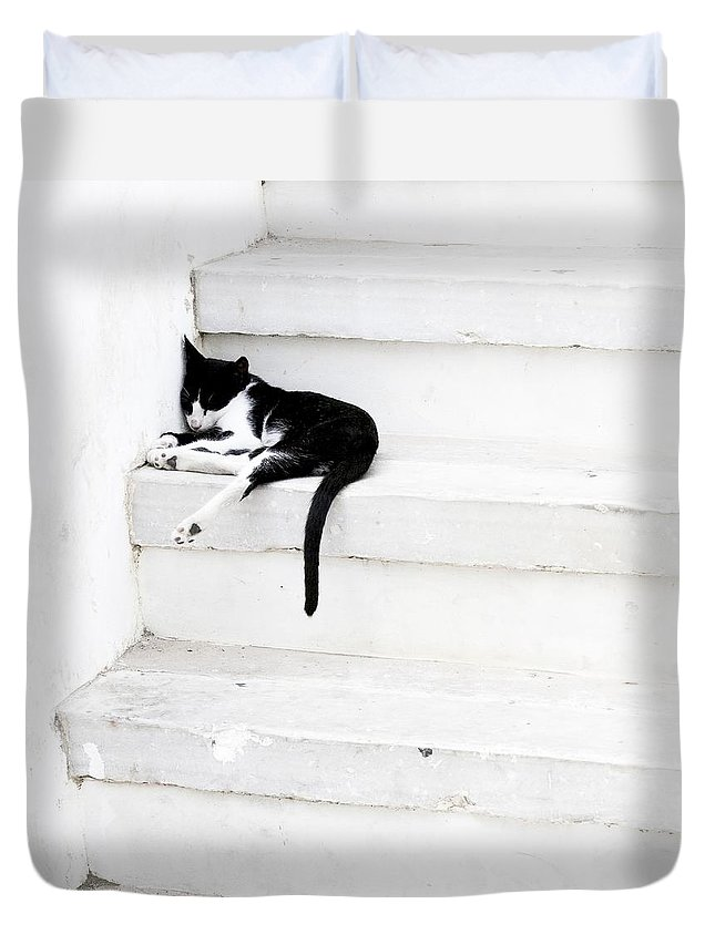 Black On White Duvet Cover featuring the photograph Black On White 2 by Lisa Parrish